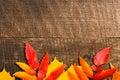 秋天背景在木的空 的复制叶子 免版税库存图片