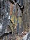 美丽的颜色石 免版税库存照片
