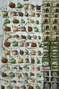 美国邮票拼  免版税库存图片