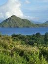 背景执行印度尼西亚海岛 月komodo蜥 监控程序摄影师照片别动队员安全性棍子 免版税库存照片