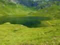 自然湖的山 免版税图库摄影