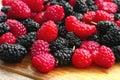 莓和桑树 免版税库存照片