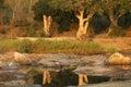 萨比河 免版税库存图片