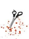 血液和 发切口剪刀 免版税图库摄影