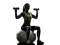 行使健身球重量训 剪影的妇女 库存图片