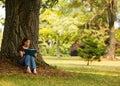读取树荫 免版税库存图片