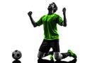 足球足球运动员  幸福喜悦下跪人silhouet 免版税库存图片