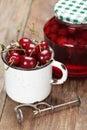 酸樱桃果子和堵塞 库存照片