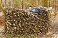 δάσος καυσίμων Στοκ Εικόνες