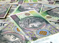 100 PLN / Zloty bills Stock Image