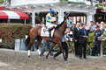 143rd Running of the Travers Stakes Royalty Free Stock Photo