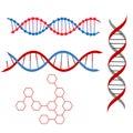 2脱氧核糖核酸 免版税图库摄影
