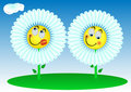 2 Funny flowers Stock Photography