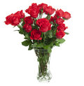 24 Roses in Glass Vase Stock Photo