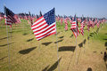 3000 Flags in sunshine Royalty Free Stock Image