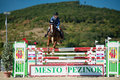 36th Postova Banka-Peugeot Grand Prix Show Jumping Royalty Free Stock Photos