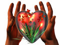 3D heart on 3D hands Royalty Free Stock Photography