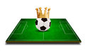 3d image of green soccer field Royalty Free Stock Photo