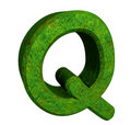 3d letter Q in green grass Royalty Free Stock Photography
