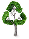 3D recycling tree Royalty Free Stock Image
