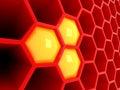 Trojrozměrný plástev medu