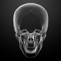 3d render skull on black background Royalty Free Stock Images