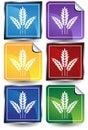 3D Sticker Set - Grain Royalty Free Stock Photo