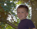 5 Year Old Boy in Tree Royalty Free Stock Photo