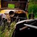 Abandoned Car (Chitina, Alaska) Stock Images