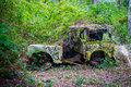 Abandoned car in the jungle Royalty Free Stock Photo