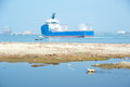 Abandoned dog at polluted water area and coast coastline near oil terminal cargo port with cargo tanker fishing boat kerala india Stock Photo