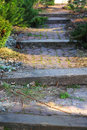 Abandoned garden path Royalty Free Stock Photo