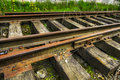 Abandoned Grunge Railroad Tracks Royalty Free Stock Images