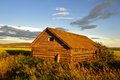Abandoned log barn at sunset an old in a field of grass wildflowers and weeds Stock Photo