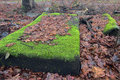 Abandoned mattress under old leaves in the woods Stock Photo