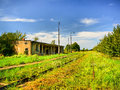 Abandoned railway station Royalty Free Stock Images
