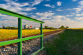 Abandoned railway track Royalty Free Stock Photo