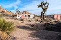 Abandoned ranch joshua tree national park homestead in Royalty Free Stock Photography