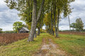 Abandoned road to old homestead latvia europe autumnal view on Royalty Free Stock Images