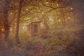 Abandoned spirits house in the magic forest with spheres of light photo of fairy wood Royalty Free Stock Photo