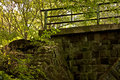 Abandoned stone bridge in deep forest Royalty Free Stock Photo