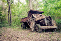 Abandoned truck in the jungle Royalty Free Stock Photo