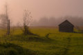 Abandoned wooden house in the field misty morning Royalty Free Stock Photo