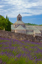 Abbey of Senanque Royalty Free Stock Images