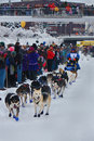 Abbie West begins the Yukon Quest Stock Photo