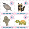 ABC alphabet for kids. Set of funny turtle raccoon fur seal quail cartoon animals character. Cards for the game. Zoo isolated on w Royalty Free Stock Photo