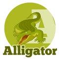 ABC Cartoon Alligator