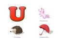ABC letter U funny kid icons set: unicorn, urchin, umbrella Royalty Free Stock Photo