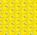 Abejorro honey colony seamless pattern background Fotos de archivo