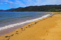 Abel Tasman National Park Royalty Free Stock Photography